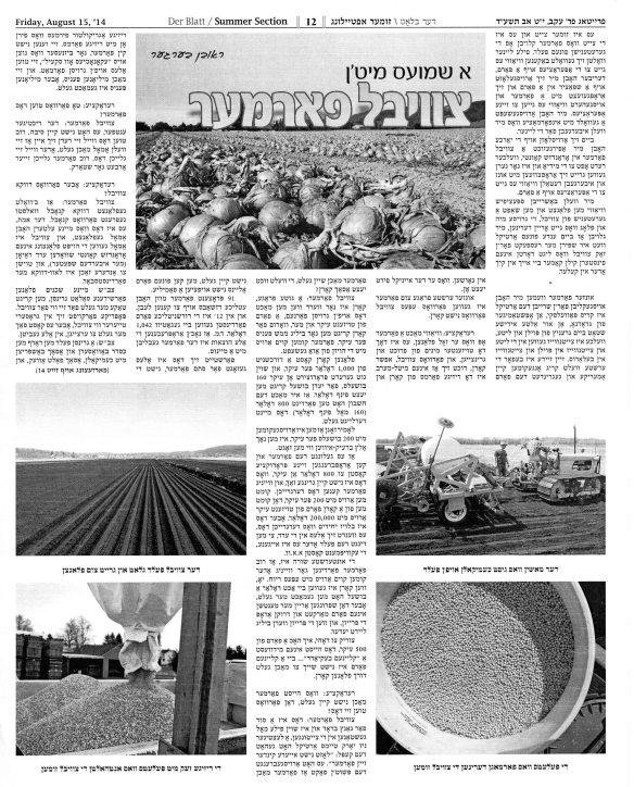 Der Blatt August 15 2014 pg 1