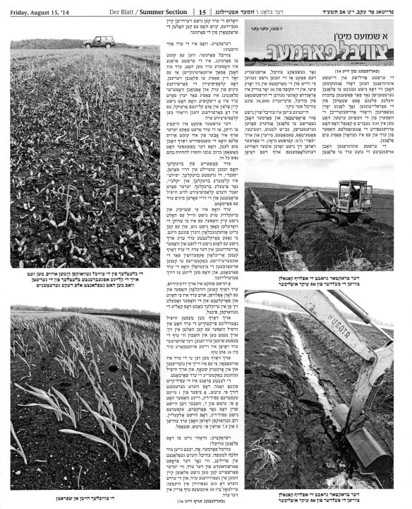 Der Blatt August 15 2014 pg 3