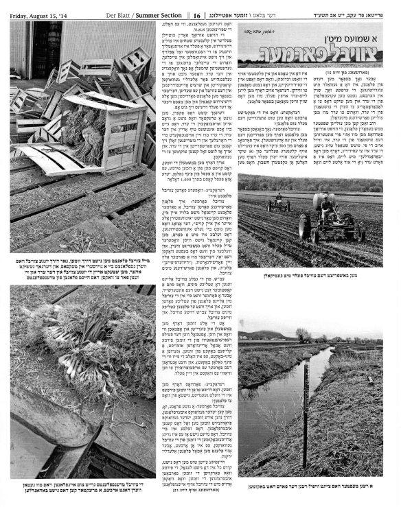 Der Blatt August 15 2014 pg 4