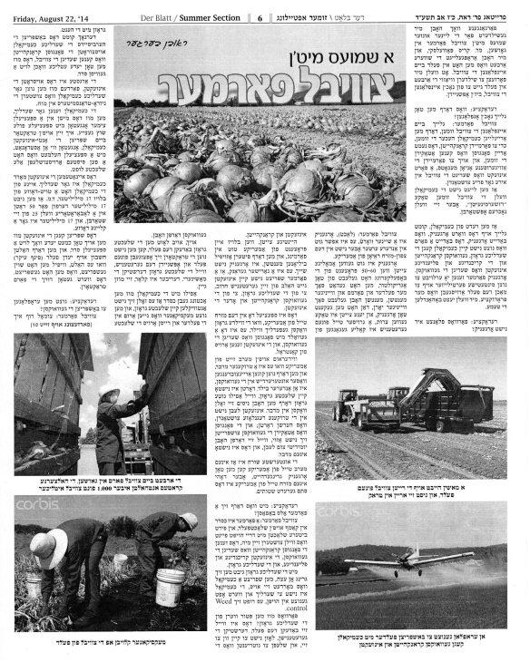 Der Blatt August 22 2014 pg 01