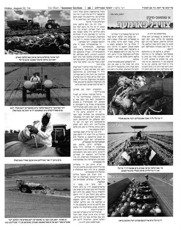 Der Blatt August 22 2014 pg 02