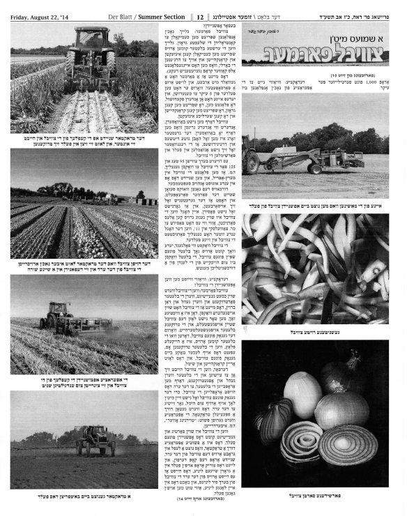 Der Blatt August 22 2014 pg 03